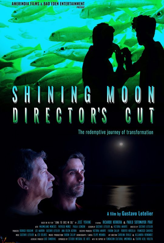 Shining Moon Director's Cut